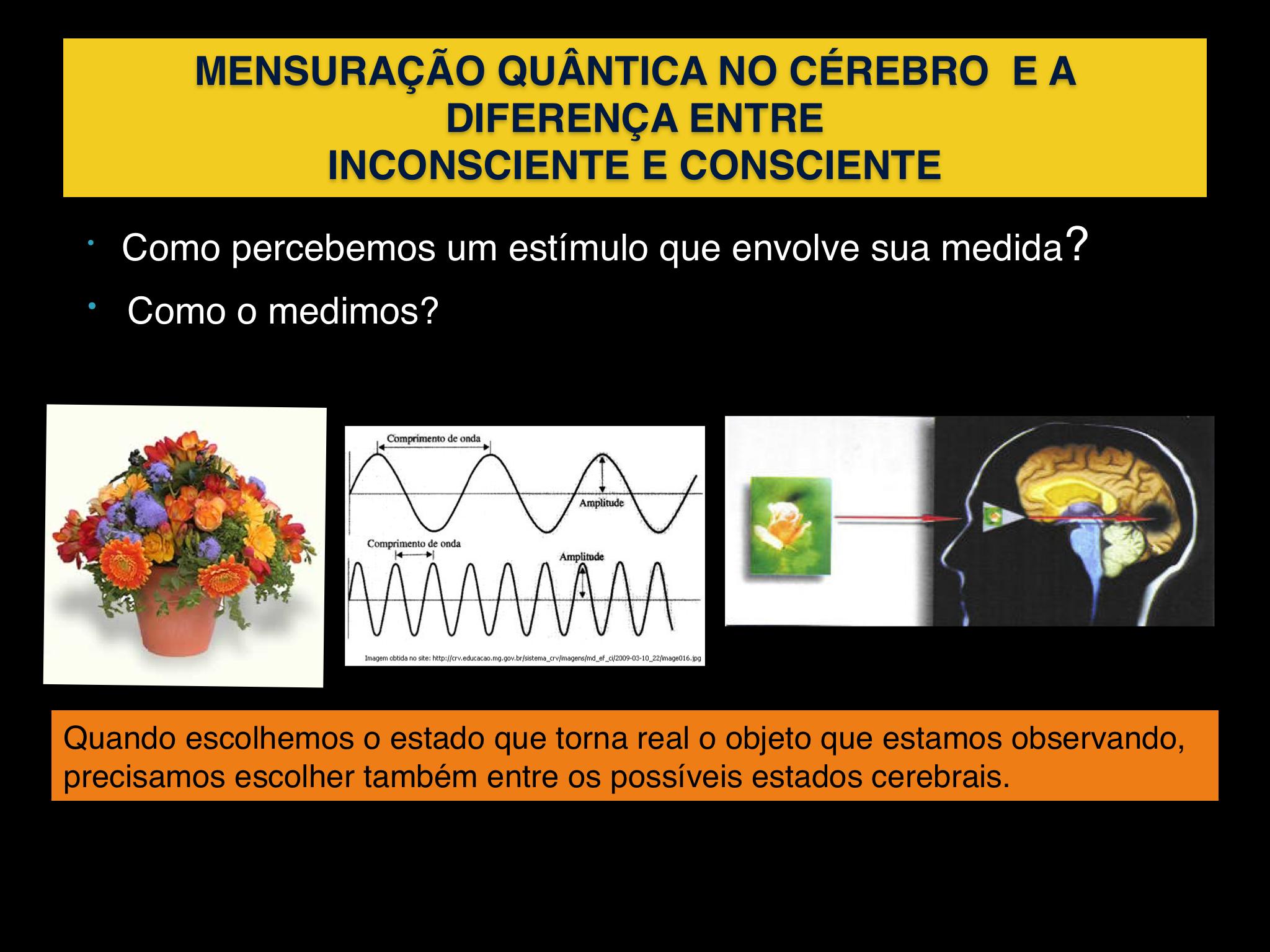 Estudo quantico
